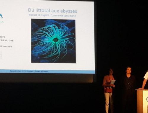 Evénement « Du Littoral aux Abysses » à Cannes – Journée Mondiale des Océans 2019