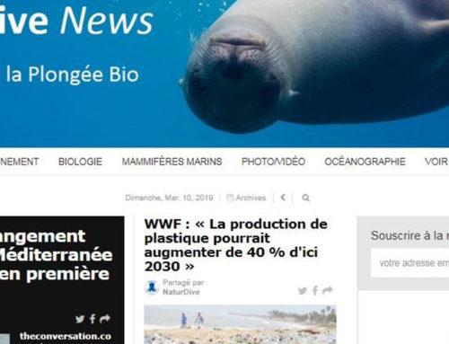 NaturDive News, le journal en ligne et gratuit sur le milieu marin