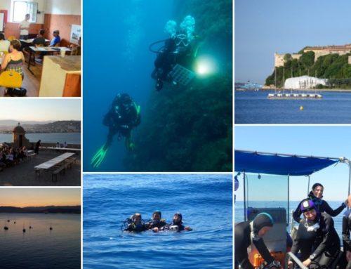 Nouveau stage aux Iles de Lérins à Cannes ! Venez découvrir les Sciences Participatives avec NaturDive…